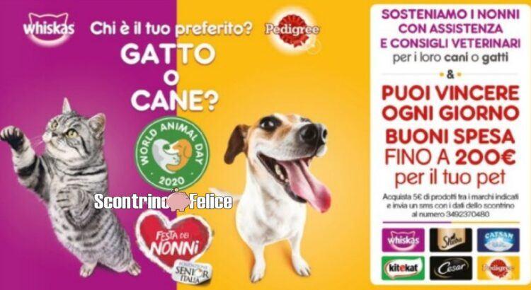 Concorso Whiskas Sheba Cesar Pedigree Catsan Kitekat World Animal Day 2020 Festa dei Nonni