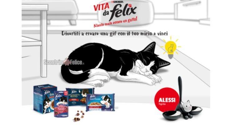 concorso gratuito VITA DA FELIX Niente male essere un gatto