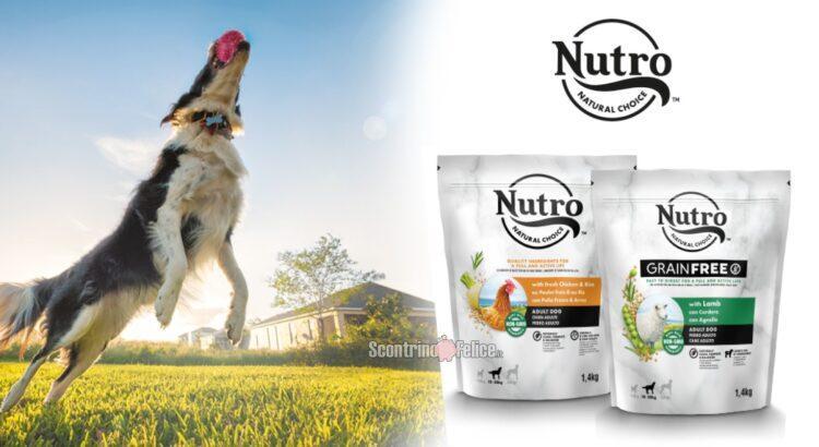 Diventa tester cibo per cani Nutro