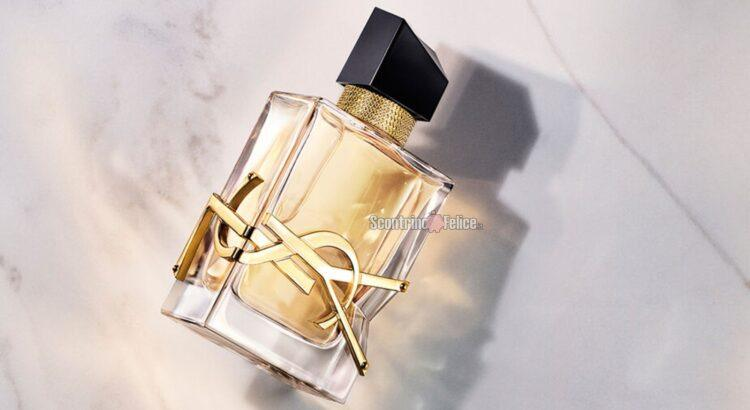 Diventa tester YSL Libre Eau de Parfum